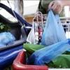 Plastic ban in the bag Tasmania News – Australia