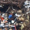Seabirds 'blighted by plastic waste'