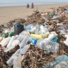 Biodegradable plastic 'false solution' for ocean waste problem