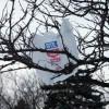 Framingham will join towns banning plastic bags   NewBostonPost