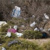 Going green: Morocco bans use of plastic bags