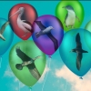 When balloons fly, seabirds die. -Australia