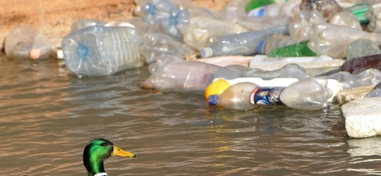Government considering taxing plastic bottles – UK
