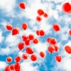 Councils urged to ban balloon releases