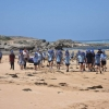 Microplastic nurdles take over Warrnambool coast