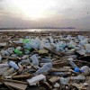 Environmentalists Warn Of Mediterranean Pollution From Lebanon Land Reclamation