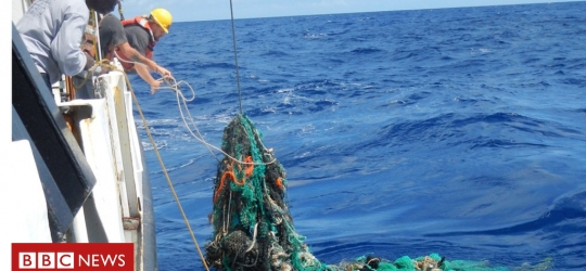 Plastic in Pacific 'growing rapidly'