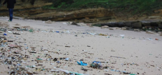 Canadians demand nation-wide strategy on plastic pollution