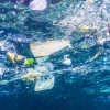 Trump signs Alaska-backed bill targeting plastic trash in Ocean