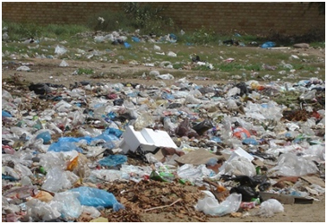 Plastic Litter - Plastic Waste Solutions