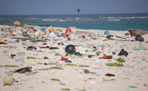 US marine-pollution-beach-ocean-plastic