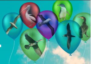 Zooballoons