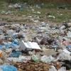 Plastic grocery bag ban passed by Mass. Senate | NewBostonPost