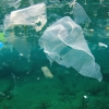 Yes, Plastic Bag Recycling Is Possible — What To Know – Earth911.com