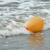 Longport bans release of helium balloons, limits lawn watering