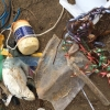 Animals suffering slow and painful deaths caused by helium balloons – Australia