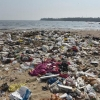 From garbage dump to garden of Eden: How locals transformed one of Mumbai's dirtiest beaches – India