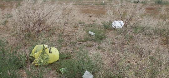 Bisbee plans challenge to bag ban complaint – USA