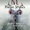 If it's not biodegradable, refuse to use it – drinking straw becomes icon of pollution – Namibia