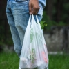 Plastic bag ban brings costs for businesses, consumers – Delware USA